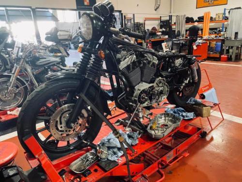 Transformacion Harley Davidson Sportster (17)