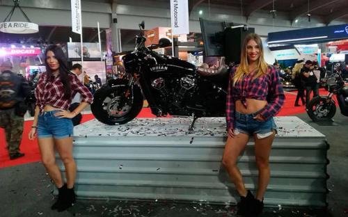 Transformacion Harley Davidson 7276