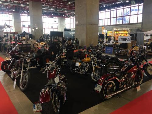 Transformacion Harley Davidson 7295