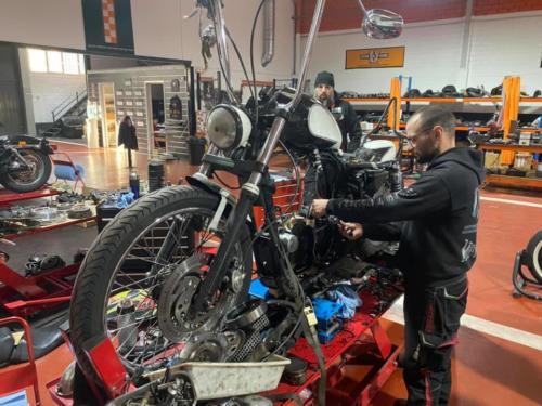 Transformacion Harley Davidson (10)