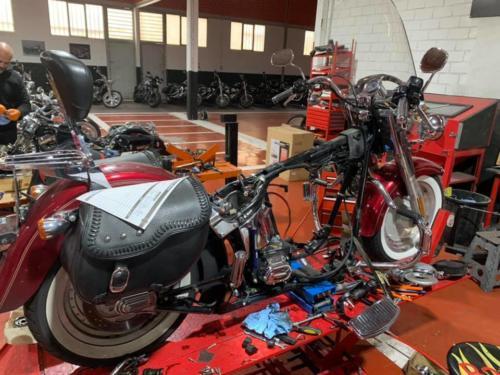 Transformacion Harley Davidson 2020.03.05