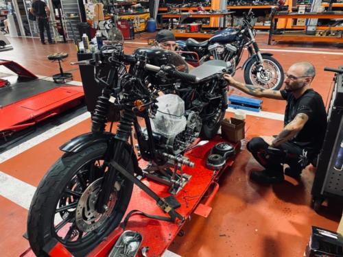 Transformacion Harley Davidson 2020.09.18