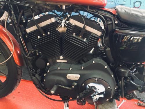 Transformacion Harley Davidson 7193