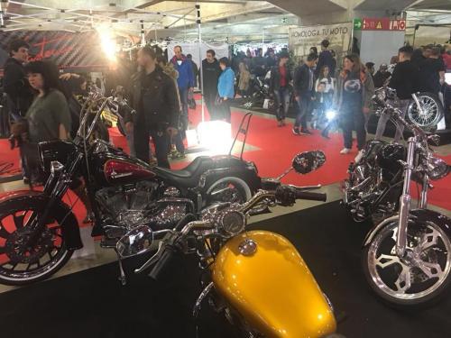 Transformacion Harley Davidson 7300