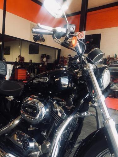 Transformacion Harley Davidson7464