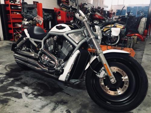 Transformacion Harley Davidson 7536