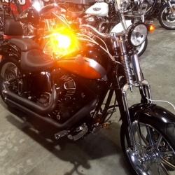 VENDIDA-HarleyDavidsonCrossBones